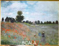 Monet, Claude (1840-1926) Papaveri, i
